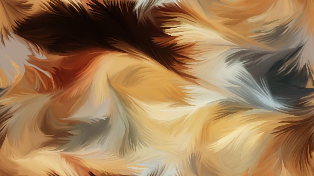 Anisotropic Blur Image Warp